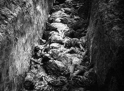 Auschwitz Concentration Camp Bodies in Trenches